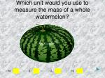 which unit would you use to measure the mass of a whole watermelon