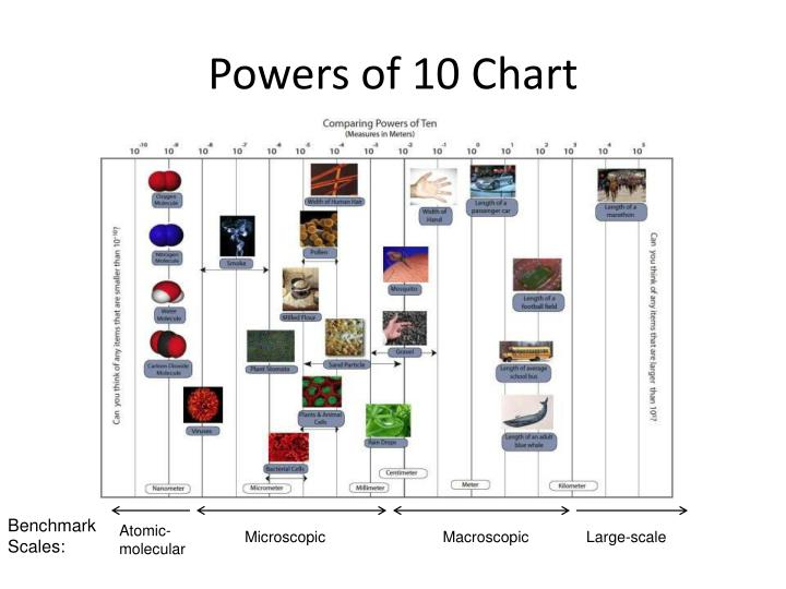 Powers of 10 Chart