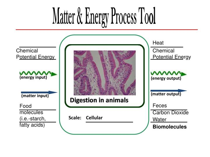 Matter & Energy Process To