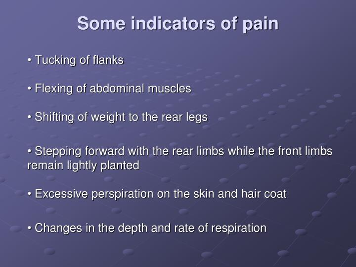 Some indicators of pain