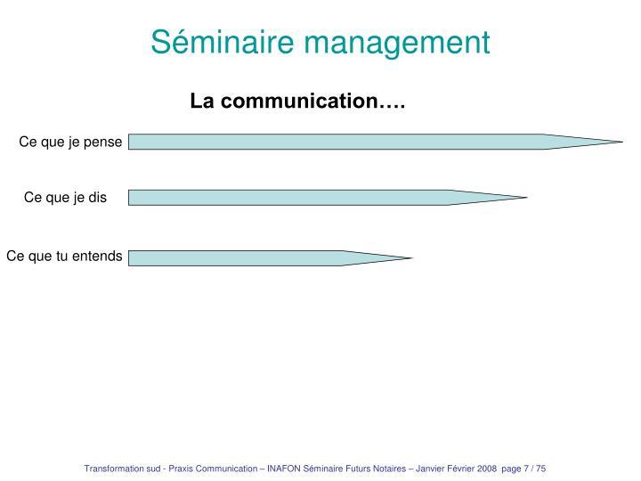 Séminaire management