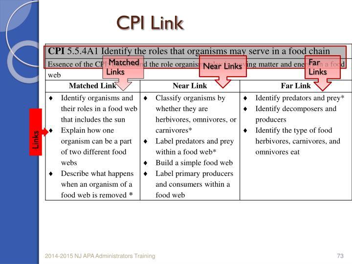 CPI Link
