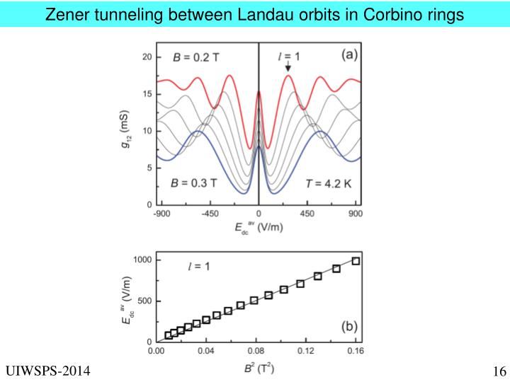 Zener tunneling between Landau orbits in Corbino rings