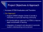 project objectives approach