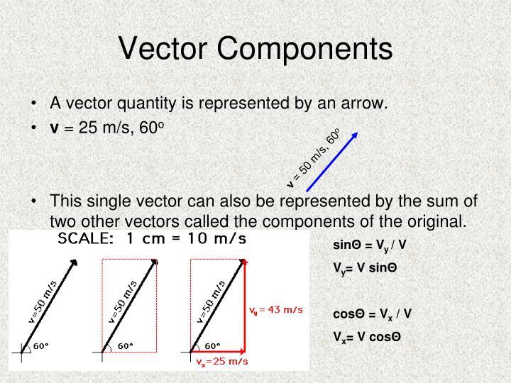 Vector Components