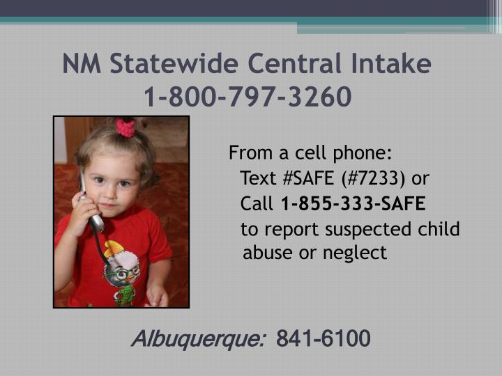 NM Statewide Central Intake