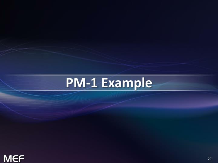 PM-1 Example