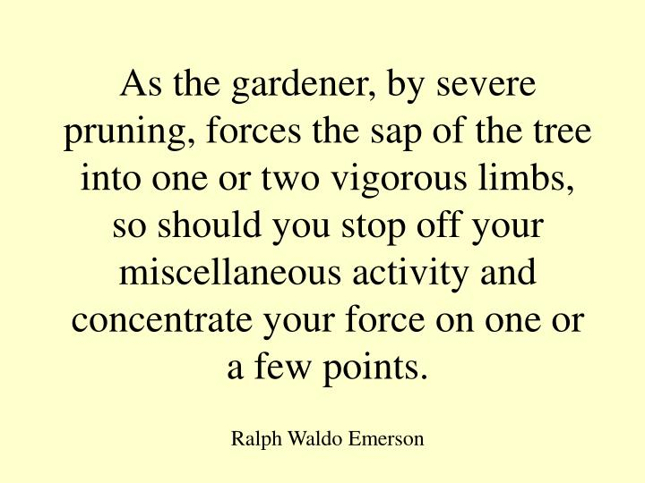 As the gardener, by severe pruning, forces the sap of the tree into one or two vigorous limbs, so should you stop off your miscellaneous activity and concentrate your force on one or a few points.