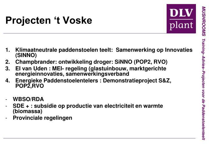 Projecten 't Voske