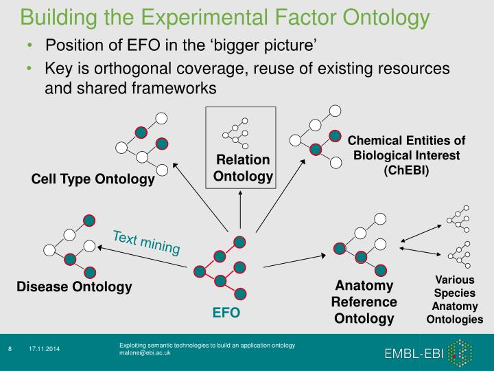 Building the Experimental Factor Ontology