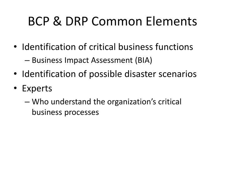 BCP & DRP Common Elements