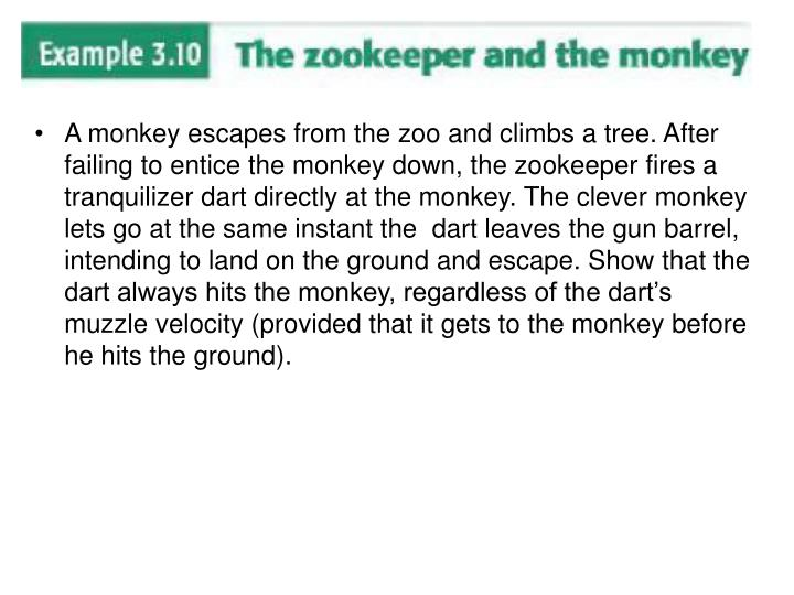 A monkey escapes from the zoo and climbs a tree. After failing to entice the monkey down, the zookeeper fires a tranquilizer dart directly at the monkey. The clever monkey lets go at the same instant the  dart leaves the gun barrel, intending to land on the ground and escape. Show that the dart always hits the monkey, regardless of the dart's muzzle velocity (provided that it gets to the monkey before he hits the ground).