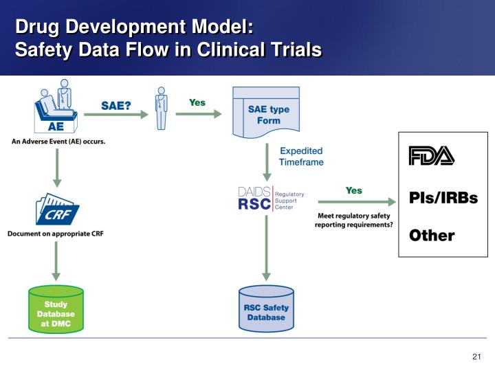 Drug Development Model: