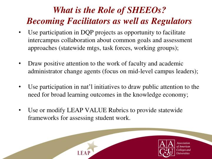 What is the Role of SHEEOs?