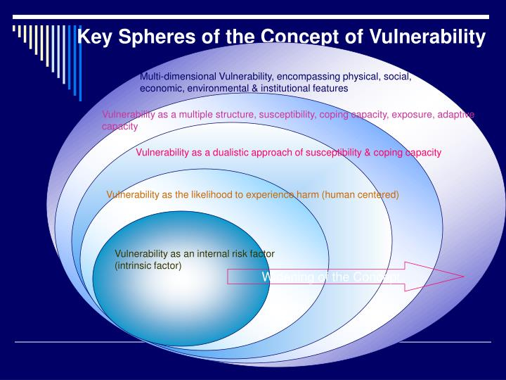 Key Spheres of the Concept of Vulnerability