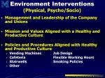 environment interventions physical psycho socio