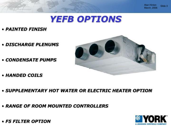 YEFB OPTIONS