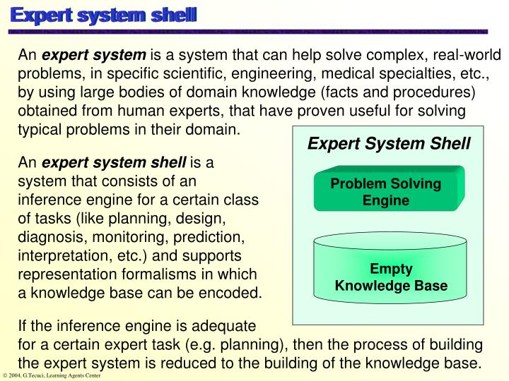 Expert system shell