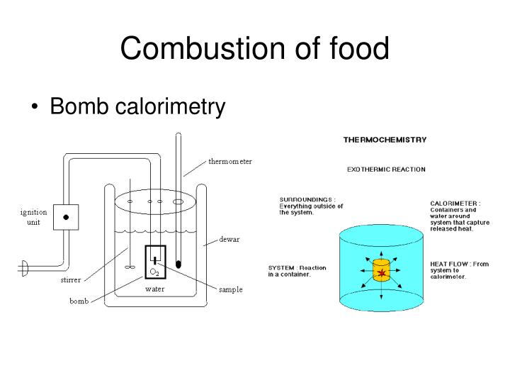 Combustion of food