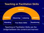 teaching or facilitation skills