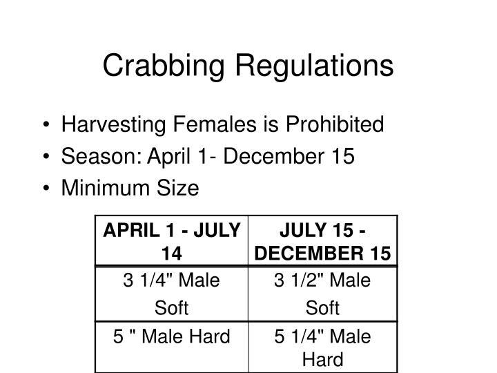 Crabbing Regulations