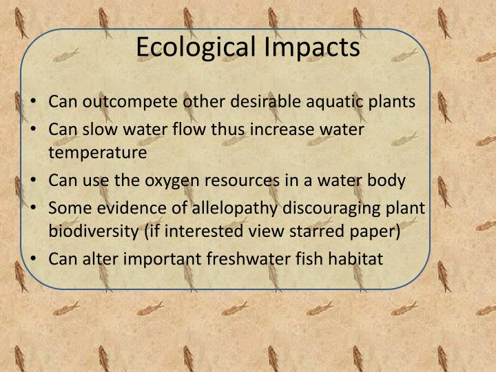 Ecological Impacts