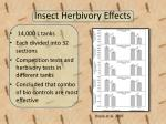 insect herbivory effects