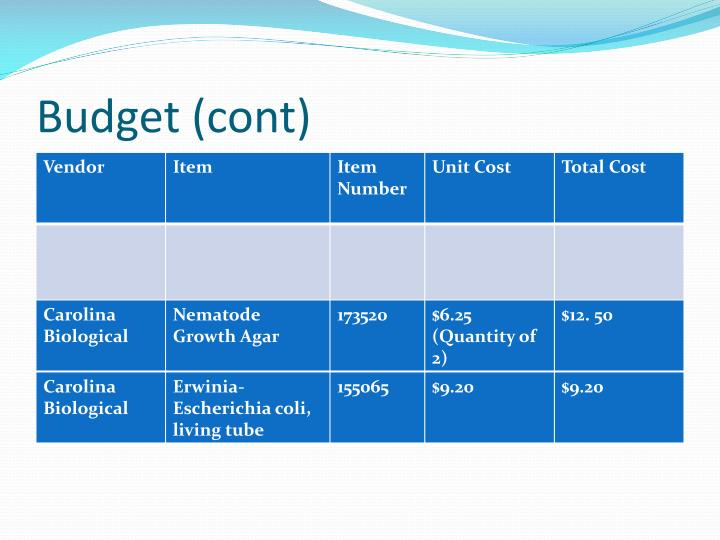 Budget (cont)