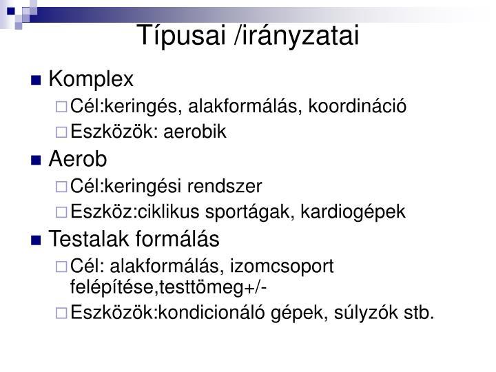 Típusai /irányzatai