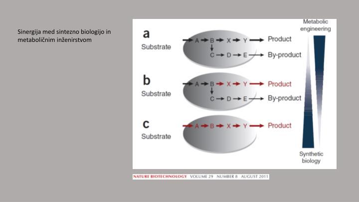 Sinergija med sintezno biologijo in