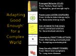 adapting good enough for a complex world