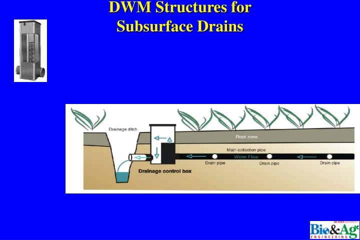DWM Structures for