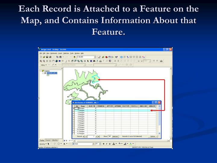 Each Record is Attached to a Feature on the Map, and Contains Information About that Feature.