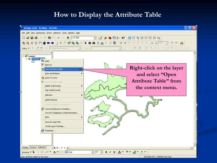 How to Display the Attribute Table