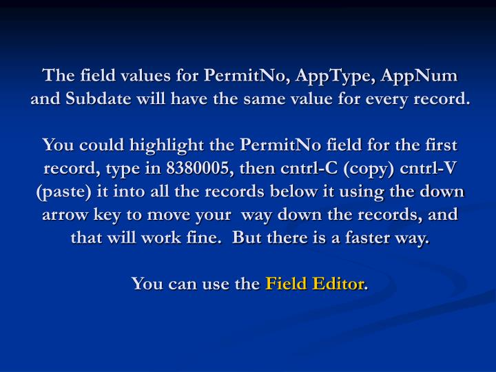 The field values for PermitNo, AppType, AppNum and Subdate will have the same value for every record.
