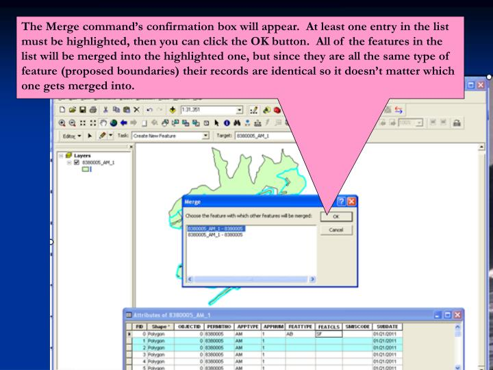 The Merge command's confirmation box will appear.  At least one entry in the list must be highlighted, then you can click the OK button.  All of the features in the list will be merged into the highlighted one, but since they are all the same type of feature (proposed boundaries) their records are identical so it doesn't matter which one gets merged into.
