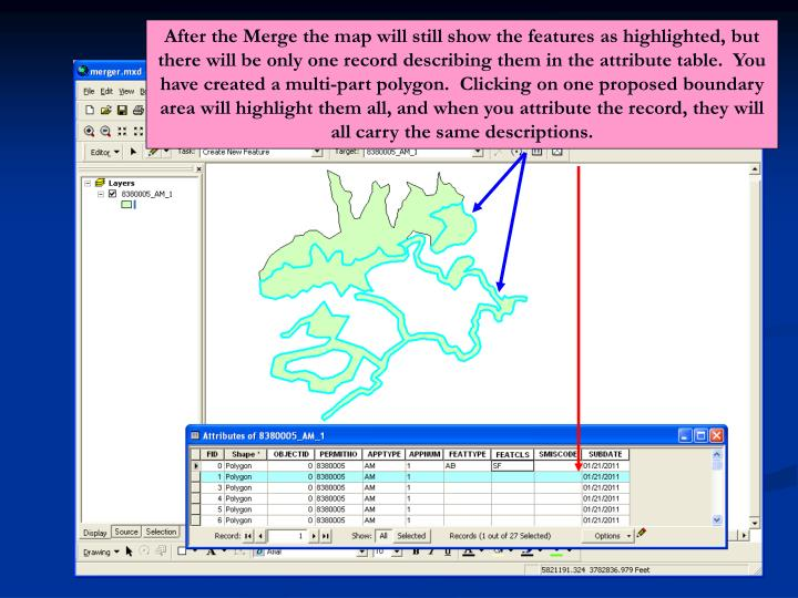 After the Merge the map will still show the features as highlighted, but there will be only one record describing them in the attribute table.  You have created a multi-part polygon.  Clicking on one proposed boundary area will highlight them all, and when you attribute the record, they will all carry the same descriptions.