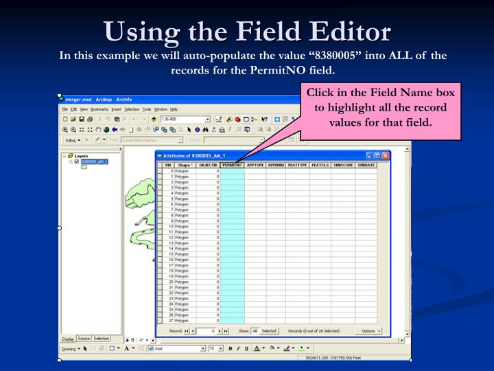 Using the Field Editor