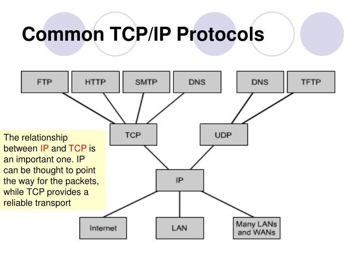 Common TCP/IP Protocols