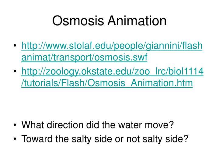 Osmosis Animation