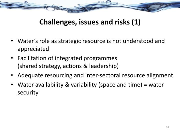 Challenges, issues and risks (1)