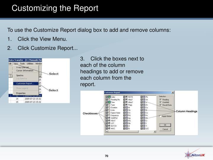 Customizing the Report