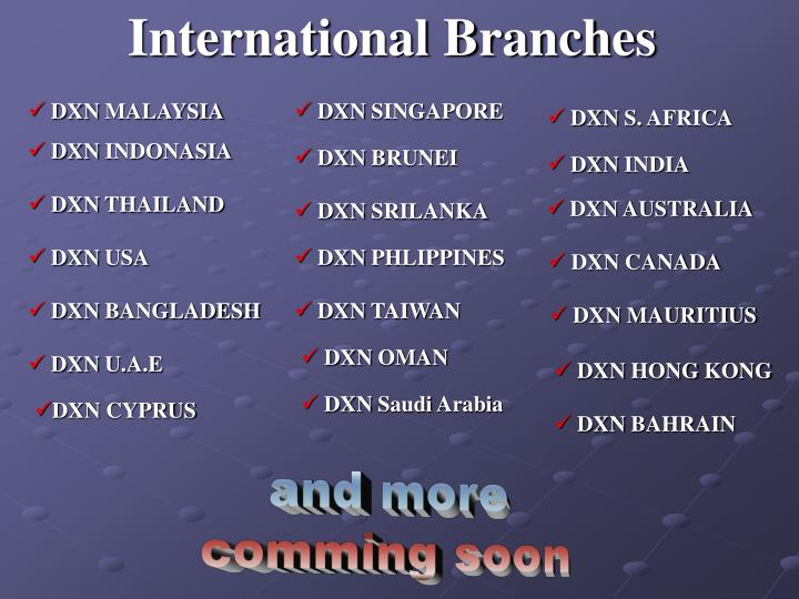 International Branches