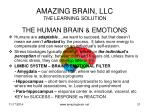 amazing brain llc the learning solution