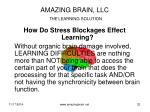 amazing brain llc the learning solution1