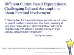 different culture based expectations challenging cultural assumptions about parental involvement