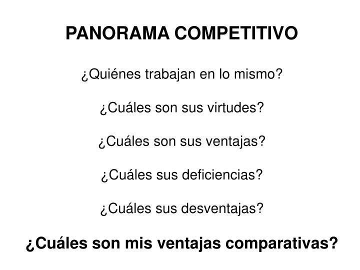 PANORAMA COMPETITIVO