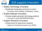 egi supports innovation