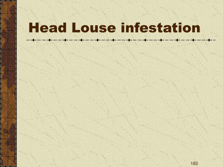 Head Louse infestation