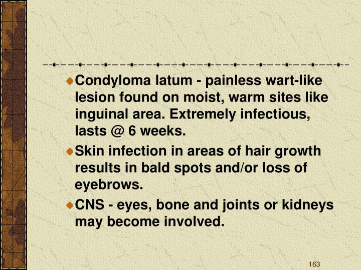 Condyloma latum - painless wart-like lesion found on moist, warm sites like inguinal area. Extremely infectious, lasts @ 6 weeks.